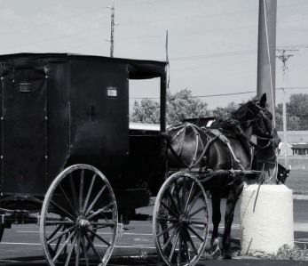 Old Tied to New: Amish Buggy Tied to Power Line